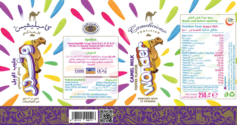 adin-camel5