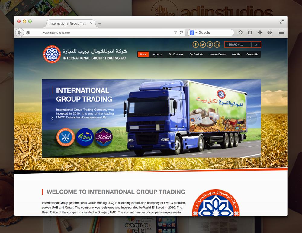adin-website3